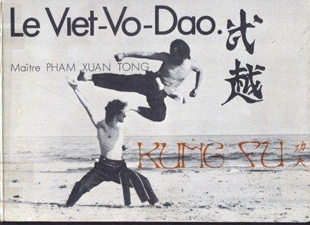 Viêt Vo Dao