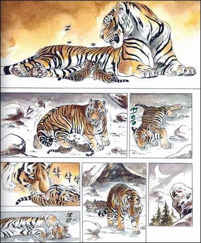 Tigre extrait 2