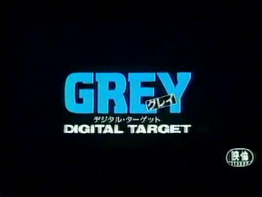 Grey Digital Target
